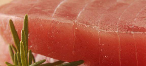 come cucinare tonno fresco