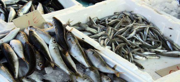 Quali pesci mangiare per abbassare il colesterolo