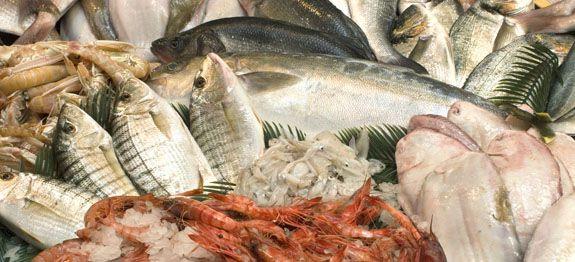 Quali pesci sono ricchi di omega 3