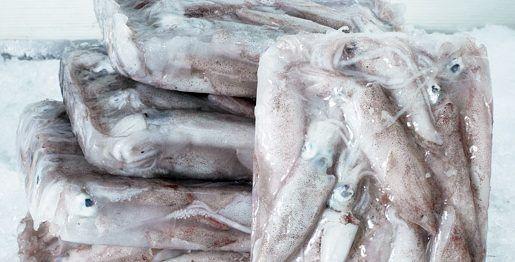 Come cucinare i calamari surgelati